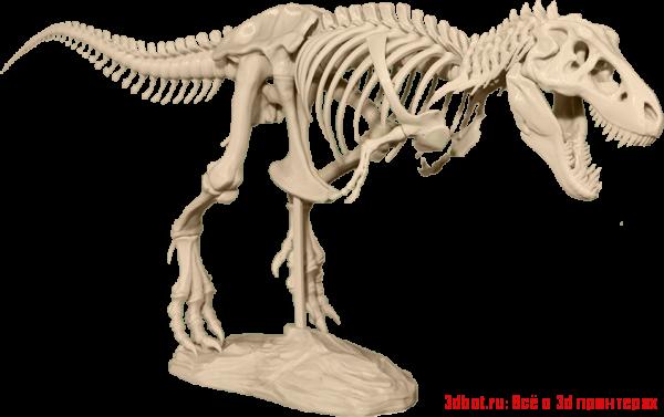 Модель скелета T-Rex для 3d принтера