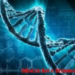 Смартфон как микроскоп для сканирования ДНК