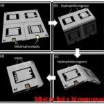 Американский инженер печатает на бумаге батарейки