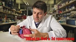 3D-печатные модели сердца