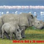 Стартап разработал искусственный рог носорога