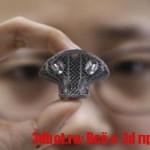 Сделана успешная имплантация позвонка, напечатанного на 3D принтере