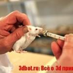 На 3d биопринтере впервые напечатали работающий орган для мыши