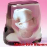 3d модель зародыша человека